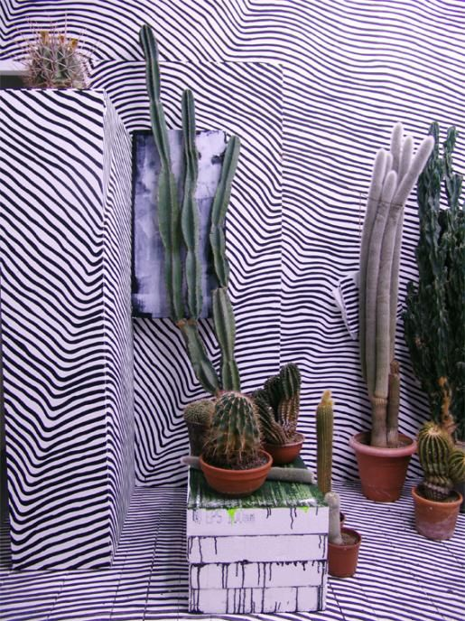 External Wall Art + Cacti