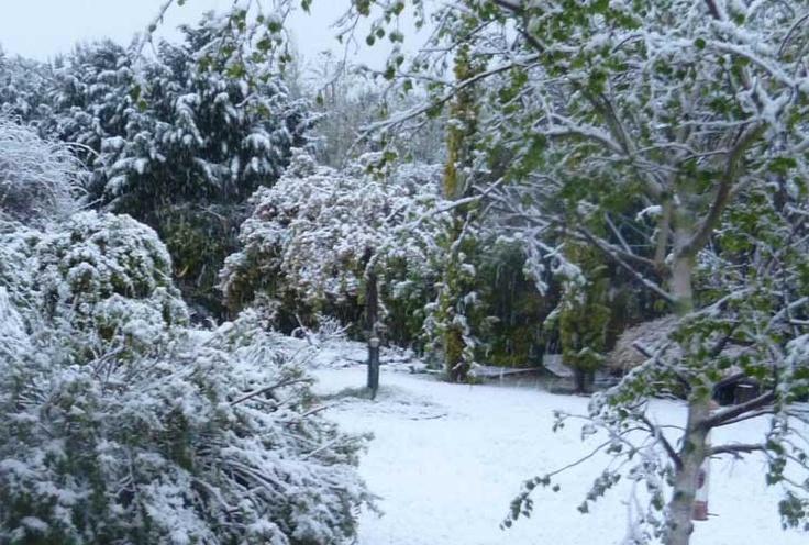 Spring snowfall in Goulburn NSW