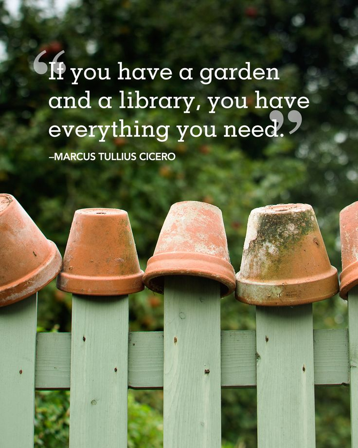 24 Absolutely Beautiful Quotes About Summer Marcus Tullius Cicero