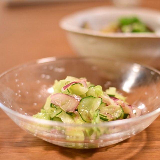 【常備菜】冷蔵庫で3日間保存OK!キャベツときゅうりのオリーブオイル酢和え     あさこ食堂