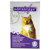 Image of Advantage Cats over 9lbs Purple 16 Months
