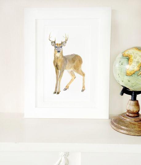 Naklejka tkanina na ścianę 'Deer Portrait  A3'