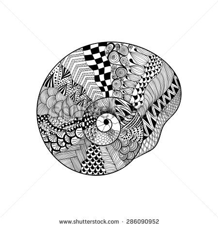 Zentangle seashell Adult Colouring Under