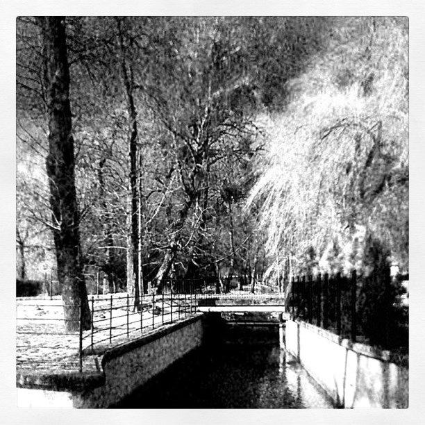 Orunia park - @jarekk- #webstagram