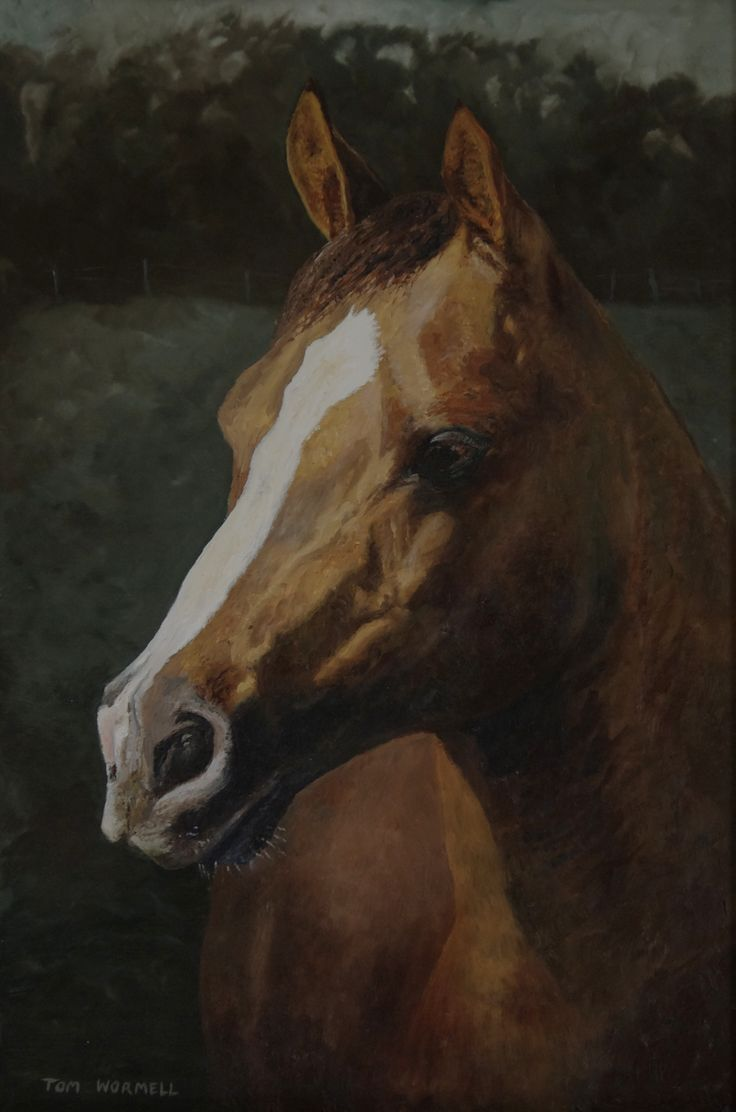 Jasper -Oil painting by Tom Wormell
