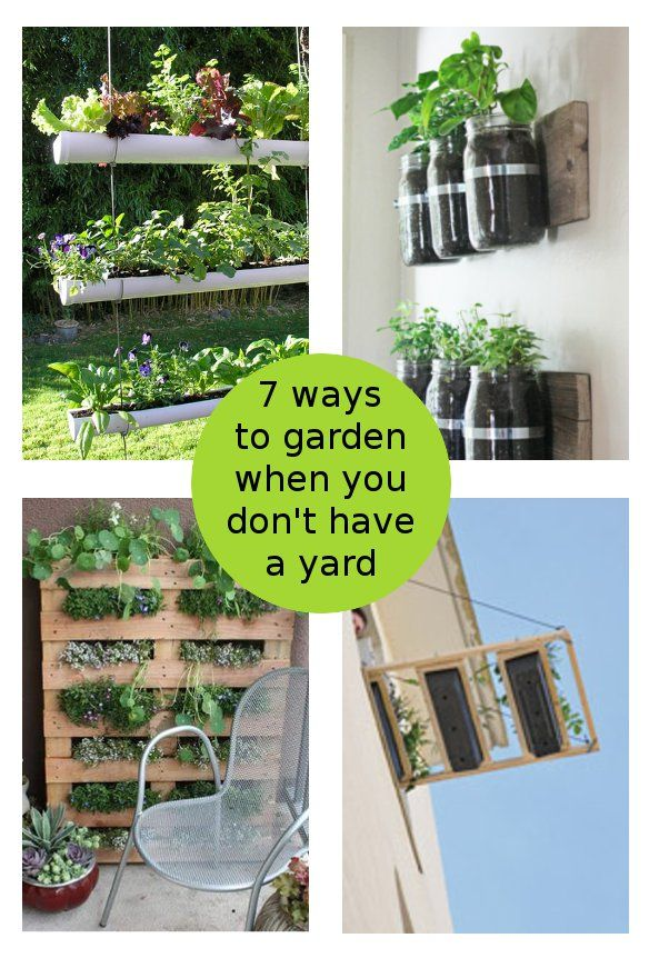 diy home sweet home: 7 Ways To Garden When You Don't Have A Yard.