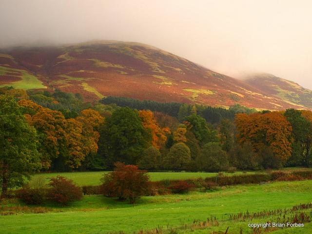 Ochil Hills in Autumn - Tillicoultry