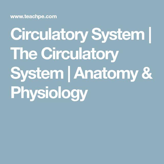Circulatory System | The Circulatory System | Anatomy & Physiology