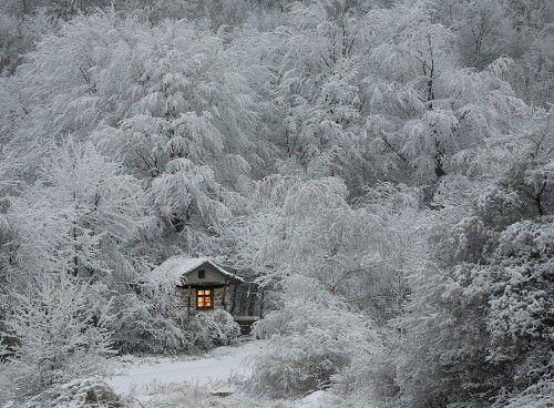 winter fairytale by taurus13