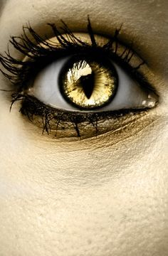 steampunk gold contacts - Google Search