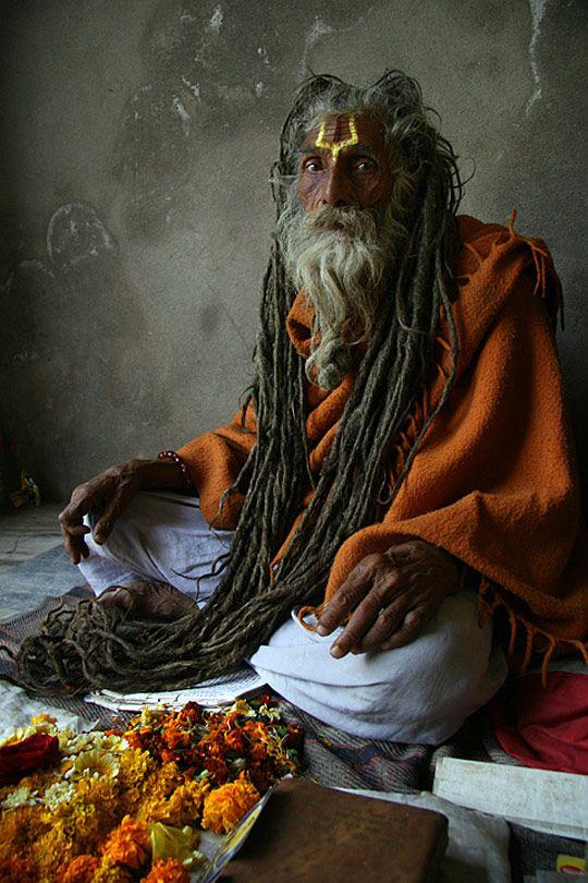 Old Man With Dreadlocks Sitting A Posing One Luv