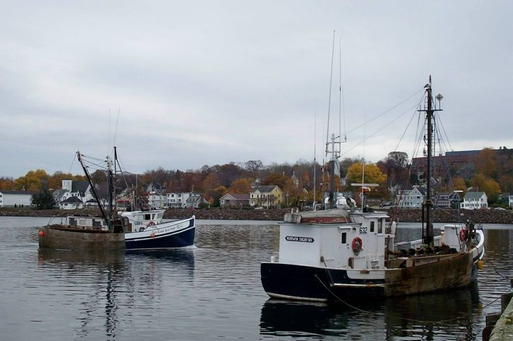 Digby scallop boats