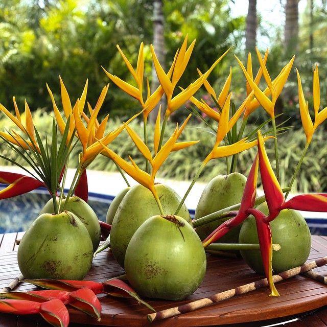 """""""Cocos, estrelícia e helicônias para as mesas externas! ☀️ Almoço de carnaval na Bahia! ☀️ @marciosleme ❤️"""""""