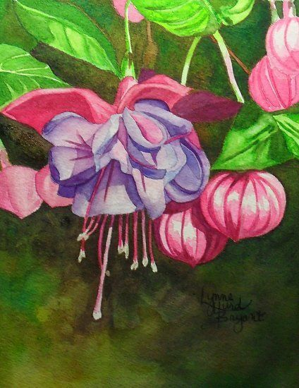 Small Fuchsia by Lynne Hurd Bryant Watercolor ~ 7 x 5