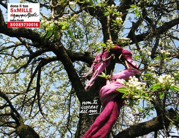 Angela da Almese ci aiuta a non scordaci... della primavera! Aspettando che torni il sole, non dimenticate il 5x1000 al Gruppo Abele! CF 800 897 300 16