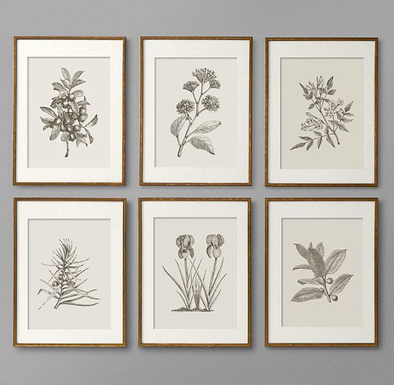 Botanical Prints  Botanical Print Set  Botanical Art  Botanical Wall Art   Botanical Art Prints  Kitchen Decor  Kitchen Wall Art  Wall Art. 15 best Printable Wall Art images on Pinterest