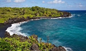 Groupon - One Admission for a Child and an Adult to Island Tours from Roberts Hawaii (Up to 45% Off). Groupon deal price: $72