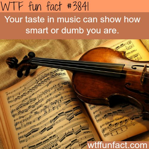 Your taste in music can show your intelligence - WTF fun facts