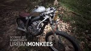 Image result for urbanmonkees