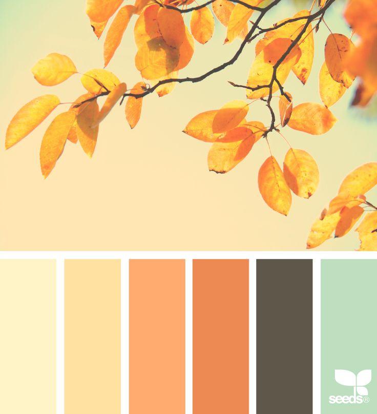 The 25 Best Autumn Color Palette Ideas On Pinterest Colour