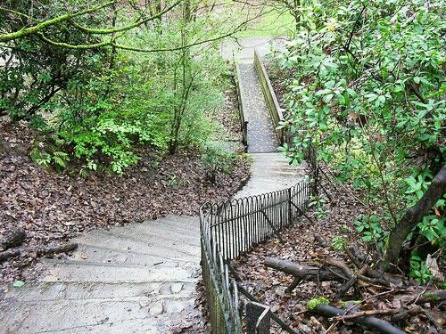 The 99 steps, Boggart Hole Clough.