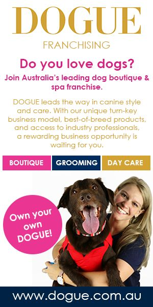 10 best dogue pet franchise australia images on pinterest boutique love dogs you can own your own dogue boutique and spa franchise get a solutioingenieria Choice Image