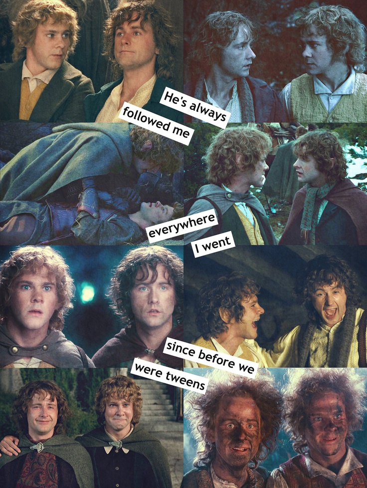 Pippin and Merry remind me of my brother and i. I always liked following my brother around. We love each other to death, even when we get made at each other. And we protect each other. Even though Pippin and Merry are cousins, not brothers, i'd say i'm Pippin, and my bro is Merry