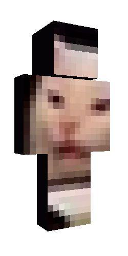 meme cat | Minecraft skins, Cat memes, Minecraft