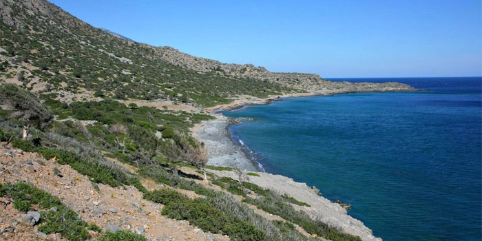 Salamia Beach