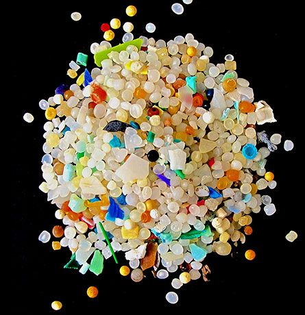 Microplastics in the ocean run 5 millimeters across or less. Their hard surfaces make them floating oases for some ocean microbes.