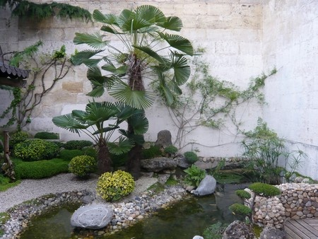 33 best images about jardin zen on pinterest gardens un and decks Jardin japonais bonsai