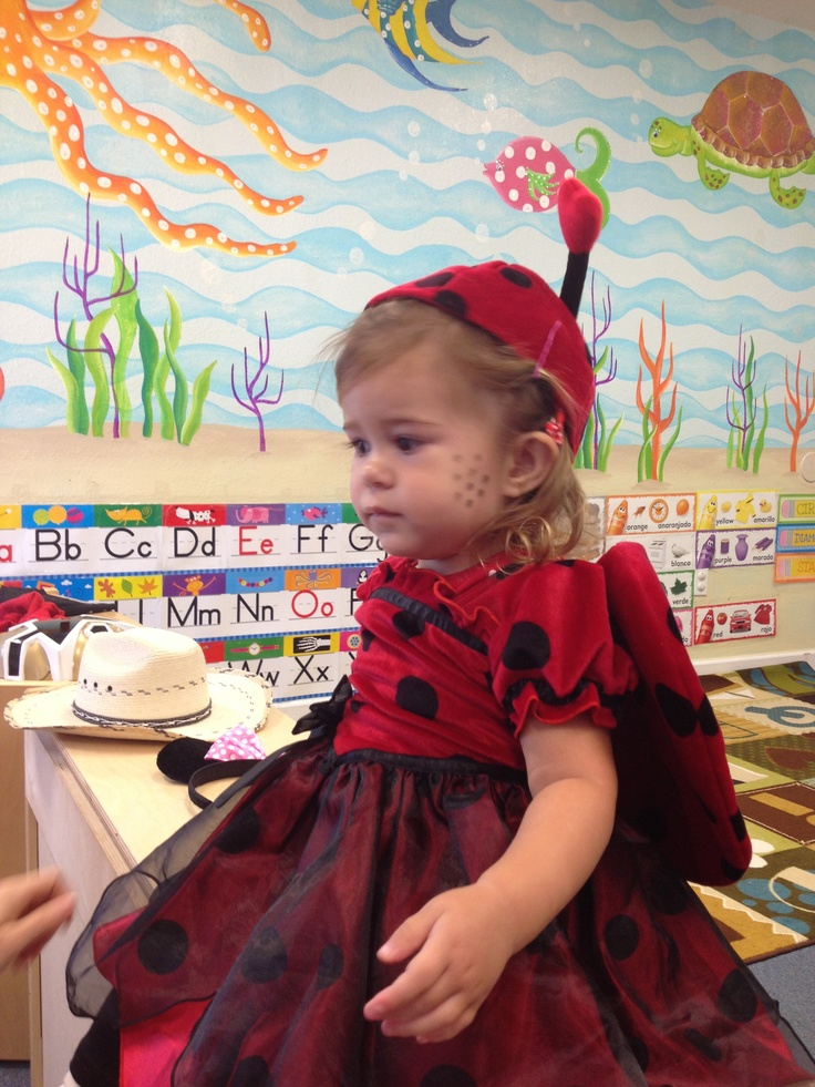 ladybug... vaquita de san antonio...Bella !!Funny Girl !!! Lovely...