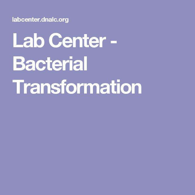 Lab Center - Bacterial Transformation