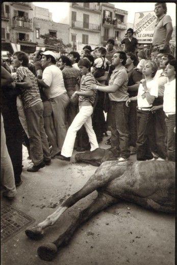 Il mondo fotografico di Letizia Battaglia - Mussomeli, 1981 - Celebrazione