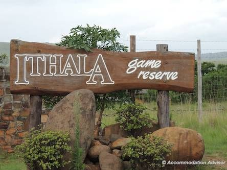 Situated 5 hrs from Johannesburg, Ithala offers wild, unfenced accommodation within a BIG 4 reserve. There are no lions here which is just as well!