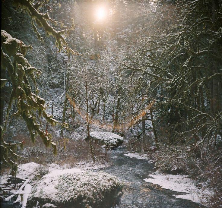 Film Photo By:Adam Harris  Location (via GPS) 44.885417, -122.636010, 12.07.2013, 1.32pm. Zeiss Ikon Taxona, Fujicolor Superior X-TRA 400....