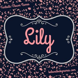 Hello everyone! It's time for another article in the nickname series we've been doing here on Beloved Baby Names and this time we're look...