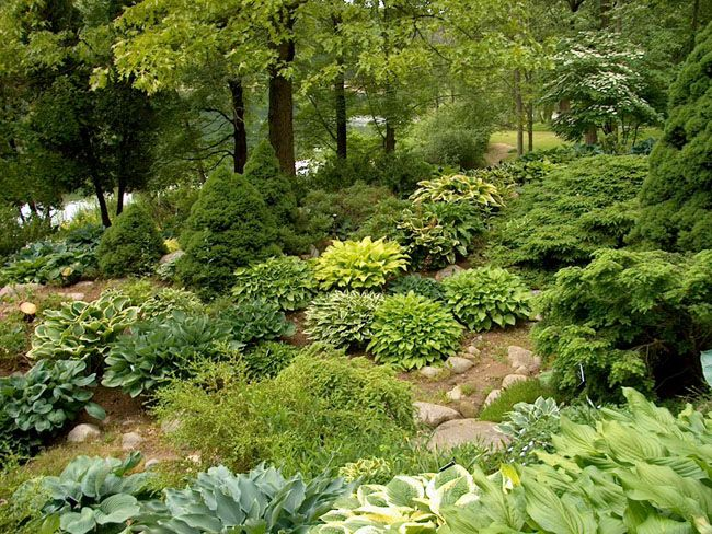 17 best ideas about steep hillside landscaping on for Hillside rock garden designs