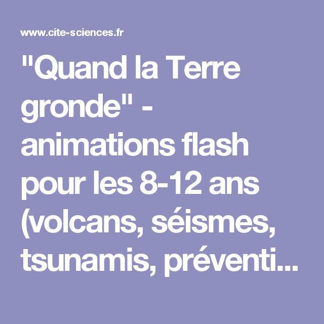 """""""Quand la Terre gronde"""" - animations flash pour les 8-12 ans (volcans, séismes, tsunamis, prévention des catastrophes naturelles) - Universcience.fr"""