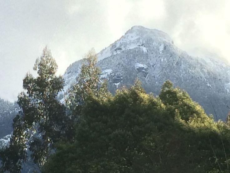 Vista a Parque Nacional Alerce Andino