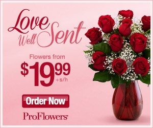 proflowers valentine's day tv code