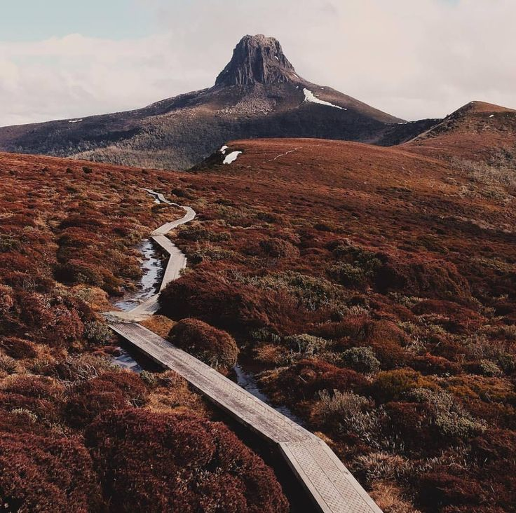 Overland track of Tasmanian wilderness Worl Heritage . 6 day trek through Cradle Mountain and Lake St Clair National Park