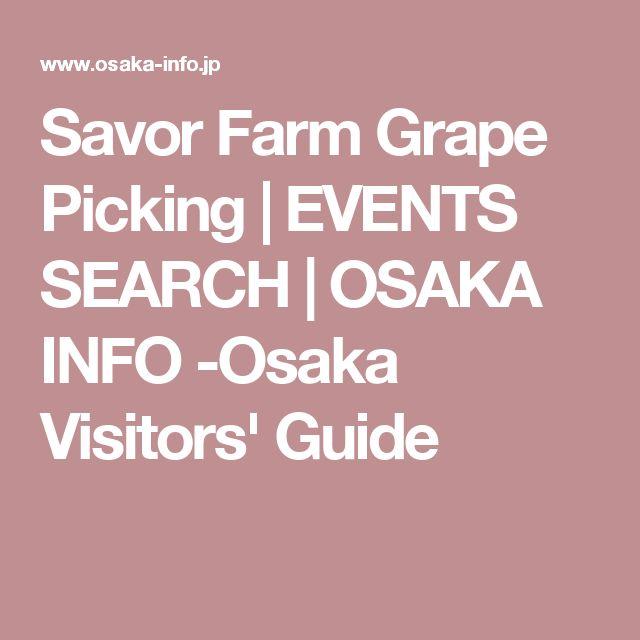Savor Farm Grape Picking   EVENTS SEARCH   OSAKA INFO -Osaka Visitors' Guide