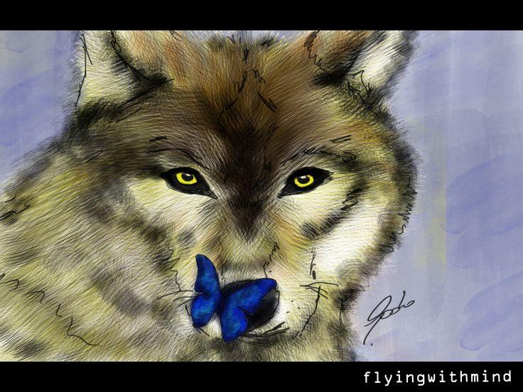 ilustración digital - wacom / lobo enamorado de una mariposa azul