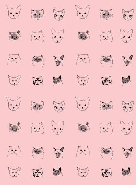 http://www.thecollection.fr/362-967-thickbox/cats-wallpaper-designed-by-eliza-fricker.jpg