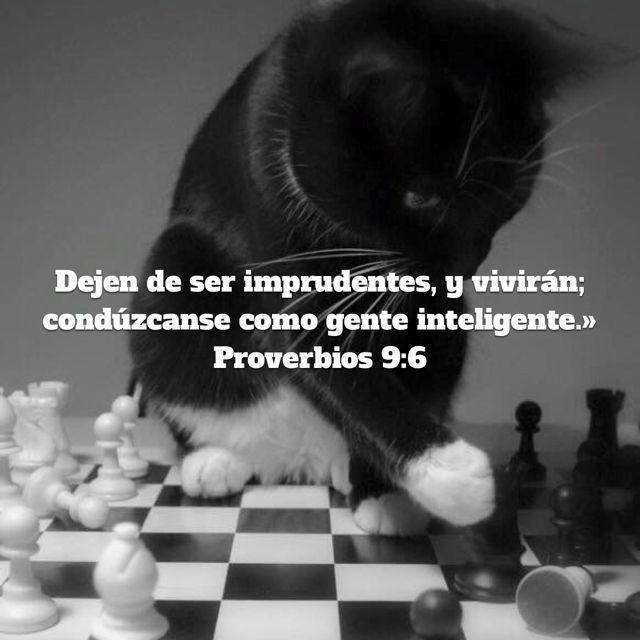 «»El que corrige al burlón se gana que lo insulten; el que reprende al malvado se gana su desprecio. No reprendas al insolente, no sea que acabe por odiarte; reprende al sabio, y te amará. Instruye al sabio, y se hará más sabio; enseña al justo, y aumentará su saber.» Proverbios 9:7-9 NVI