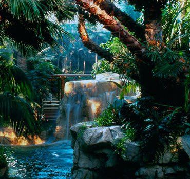 Mirage Hotel in Las Vegas - my 2nd favorite hotel b/c it has a rainforest throughout the hotel - AMAZING!!!