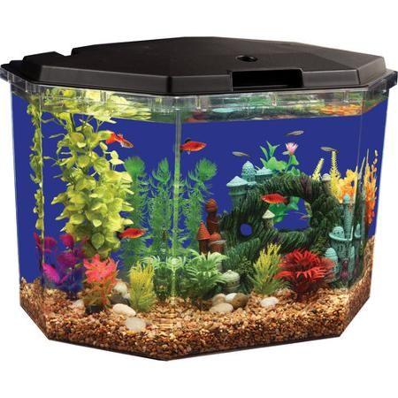 Aqua culture 6 5 gal semi hex aquarium kit aquarium fish for Betta fish food walmart