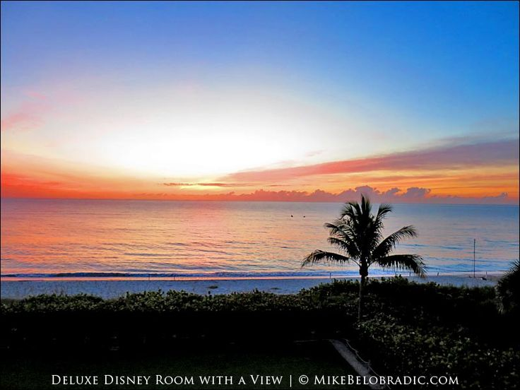 Amazing beachfront accommodations at Disney's Vero Beach Resort. #LuxuryDisney #DisneyVeroBeach #Sunrise #Florida #TreasureCoast http://mikebelobradic.com/view-room-2322-disneys-vero-beach-resort-florida/