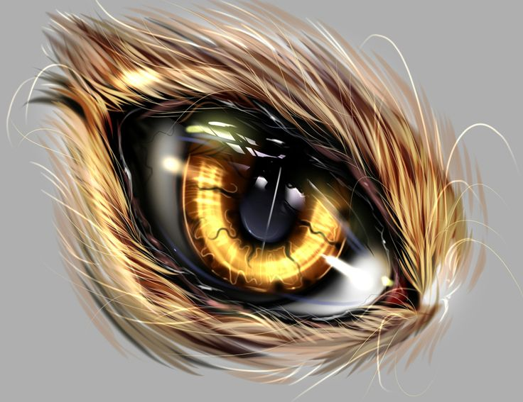 Beast Eye, #Abstract, #Eye, #Paintings & #Airbrushing